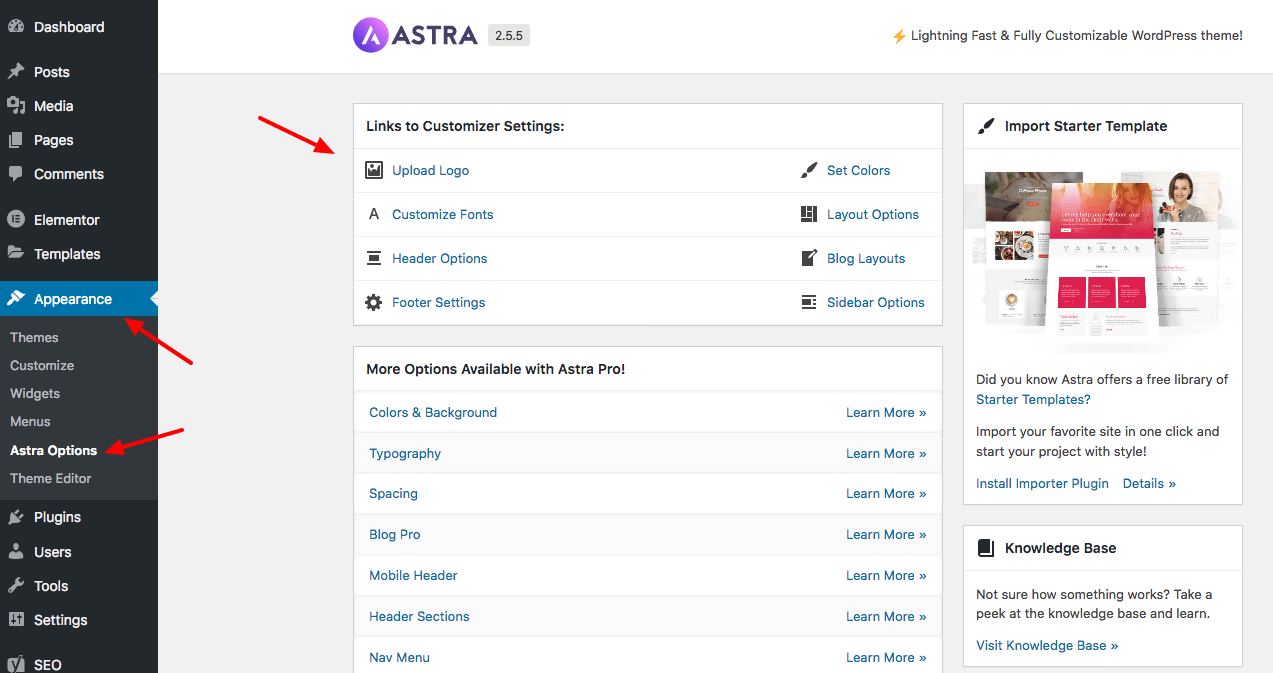 Astra theme options